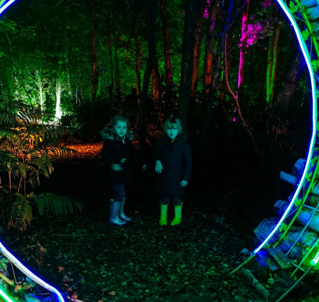 not just a tit magical woodland experience neon circle entering the woods