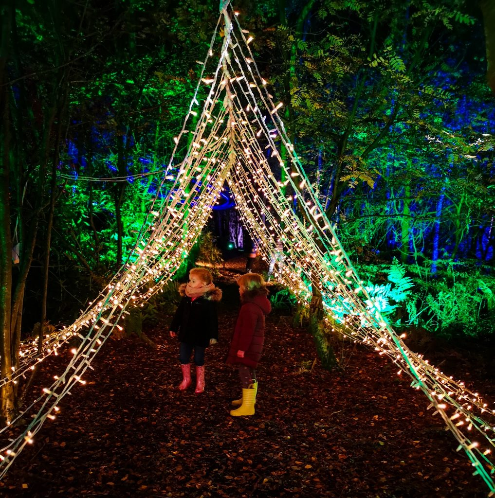 not just a tit magical woodland experience tent of lights