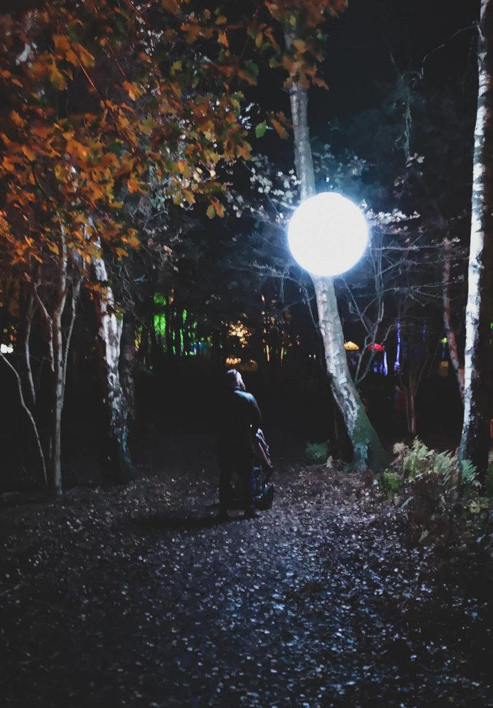 not just a tit magical woodland experience moon light show