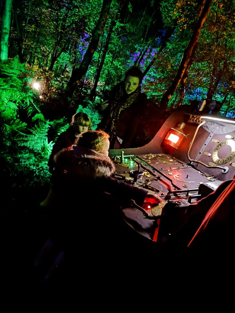 not just a tit magical woodland experience lighting machine