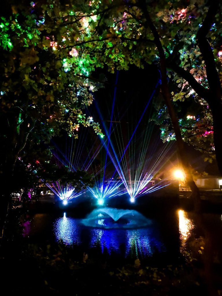 not just a tit magical woodland experience light show on water strobe lighting