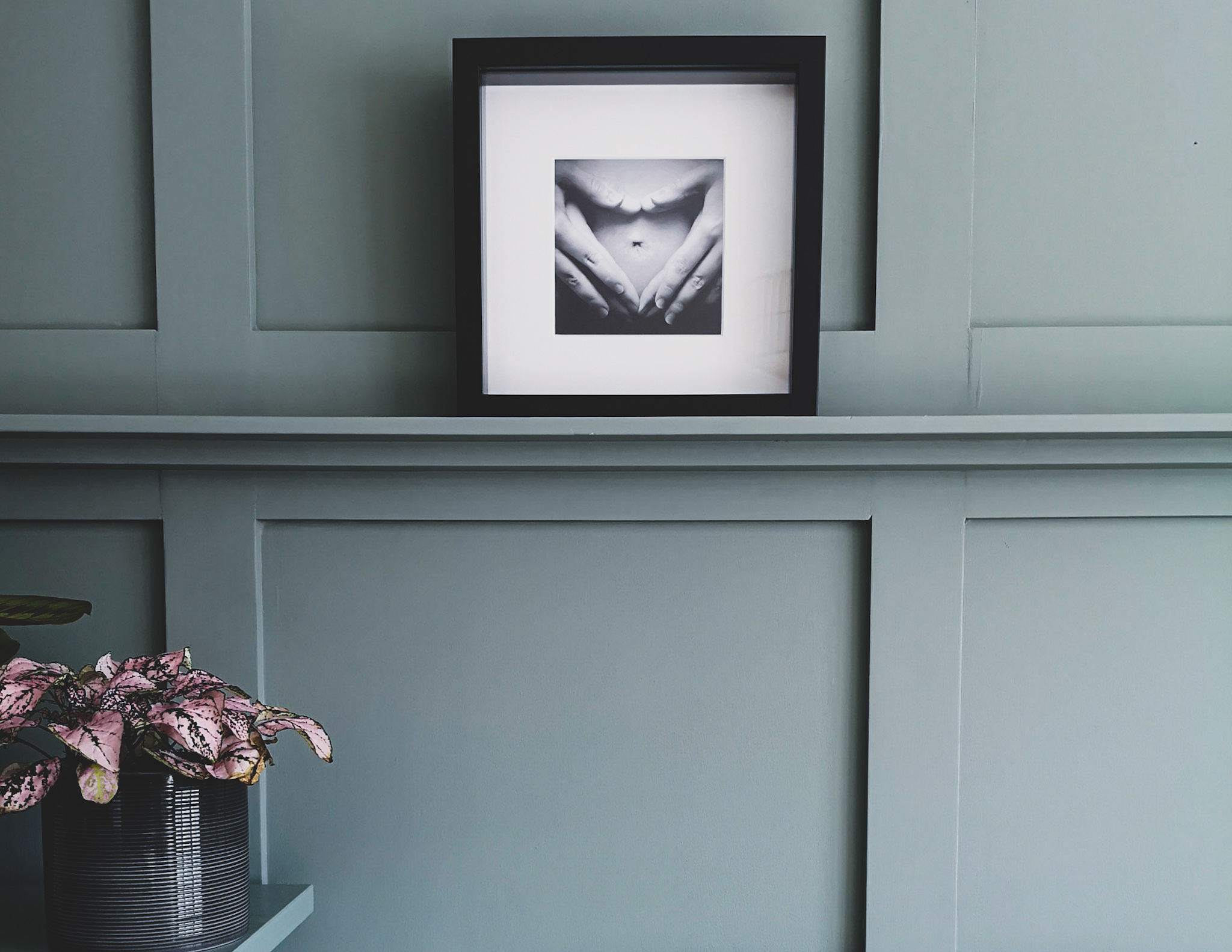 Do It Yourself: How to create a panelled wall